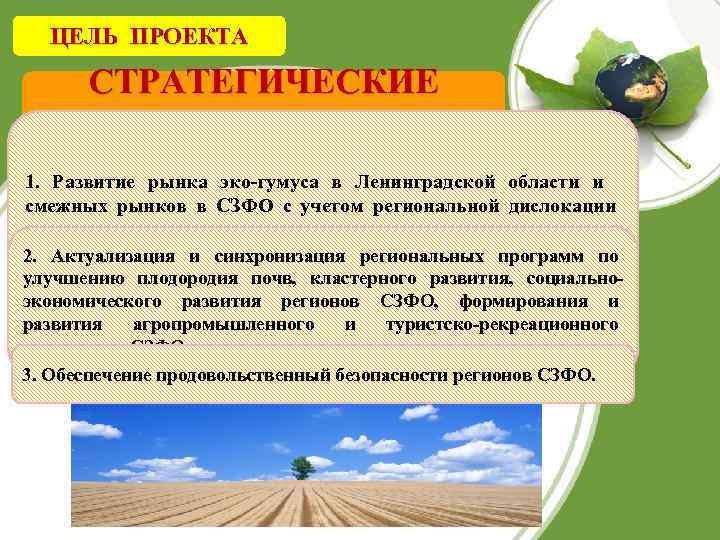 ЦЕЛЬ ПРОЕКТА СТРАТЕГИЧЕСКИЕ ЦЕЛИ 1. Развитие рынка эко-гумуса в Ленинградской области и смежных рынков