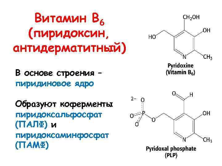 Витамин В 6 (пиридоксин, антидерматитный) В основе строения – пиридиновое ядро Образуют коферменты пиридоксальфосфат