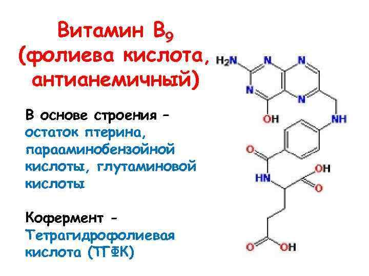 Витамин В 9 (фолиева кислота, антианемичный) В основе строения – остаток птерина, парааминобензойной кислоты,
