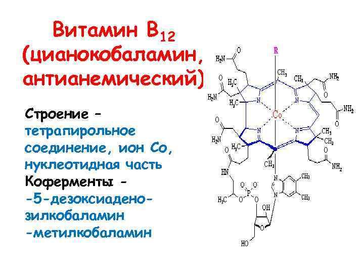 Витамин В 12 (цианокобаламин, антианемический) Строение – тетрапирольное соединение, ион Со, нуклеотидная часть Коферменты
