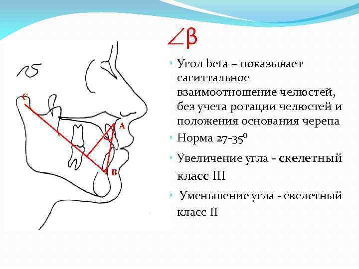 β С A Угол beta – показывает сагиттальное взаимоотношение челюстей, без учета ротации