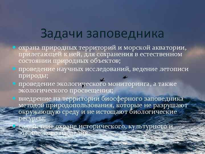Задачи заповедника охрана природных территорий и морской акватории, прилегающей к ней, для сохранения в