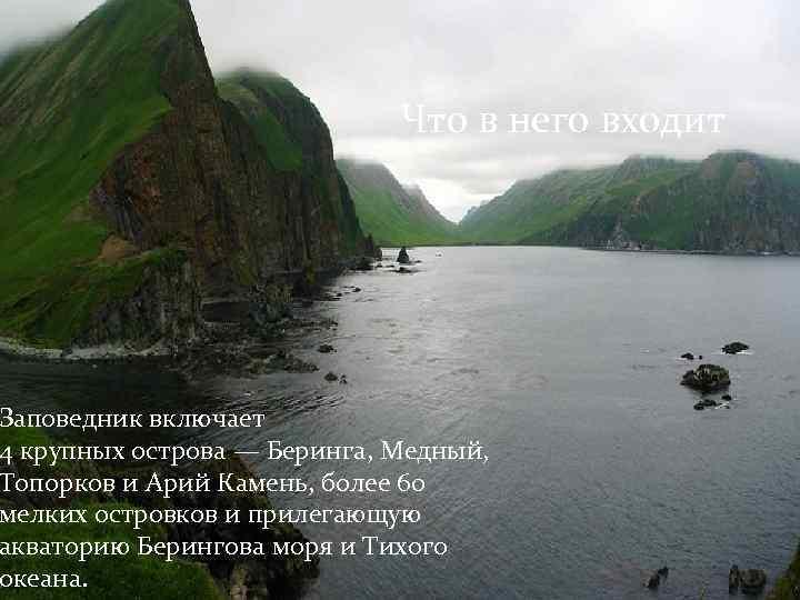 Что в него входит Заповедник включает 4 крупных острова — Беринга, Медный, Топорков и