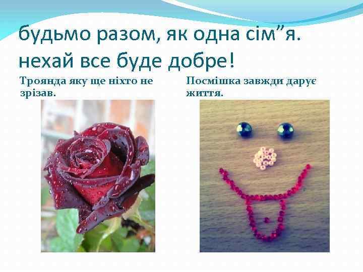 """будьмо разом, як одна сім""""я. нехай все буде добре! Троянда яку ще ніхто не"""