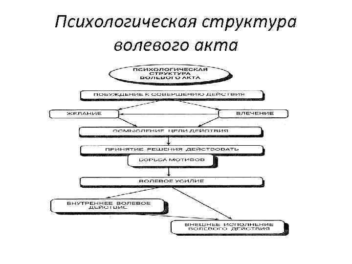 Психологическая структура волевого акта