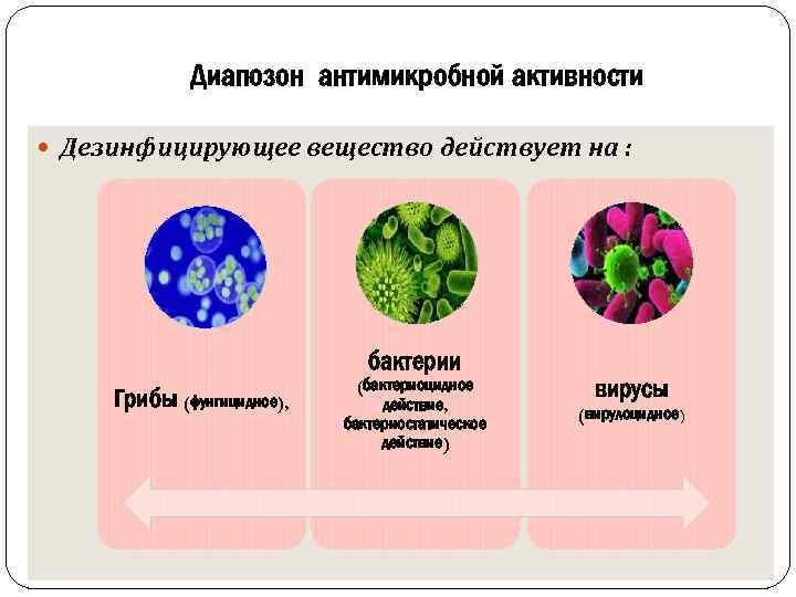 Диапозон антимикробной активности Дезинфицирующее вещество действует на : бактерии Грибы (фунгицидное), (бактериоцидное действие, бактериостатическое