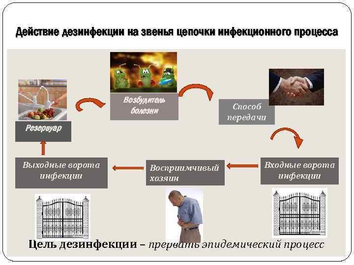 Действие дезинфекции на звенья цепочки инфекционного процесса Возбудитель болезни Способ передачи Резервуар Выходные ворота