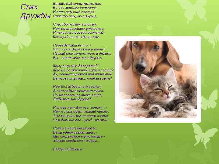 Русская открытка, детские стихи про дружбу короткие и красивые