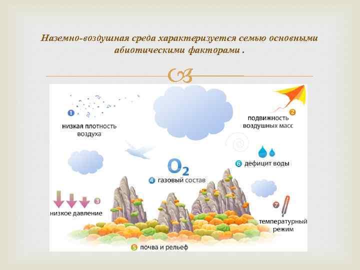 Наземно-воздушная среда характеризуется семью основными абиотическими факторами.