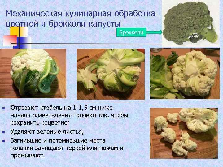 Механическая кулинарная обработка цветной и брокколи капусты Брокколи n n n Отрезают стебель на