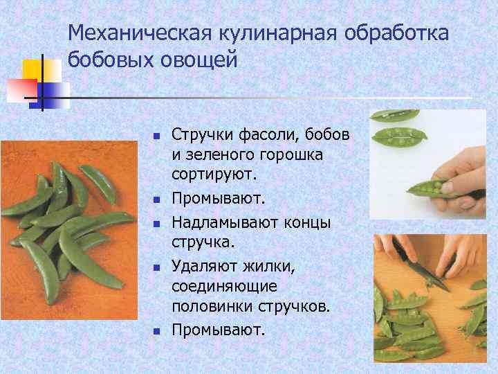 Механическая кулинарная обработка бобовых овощей n n n Стручки фасоли, бобов и зеленого горошка