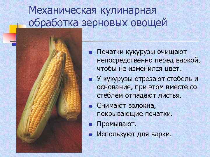 Механическая кулинарная обработка зерновых овощей n n n Початки кукурузы очищают непосредственно перед варкой,