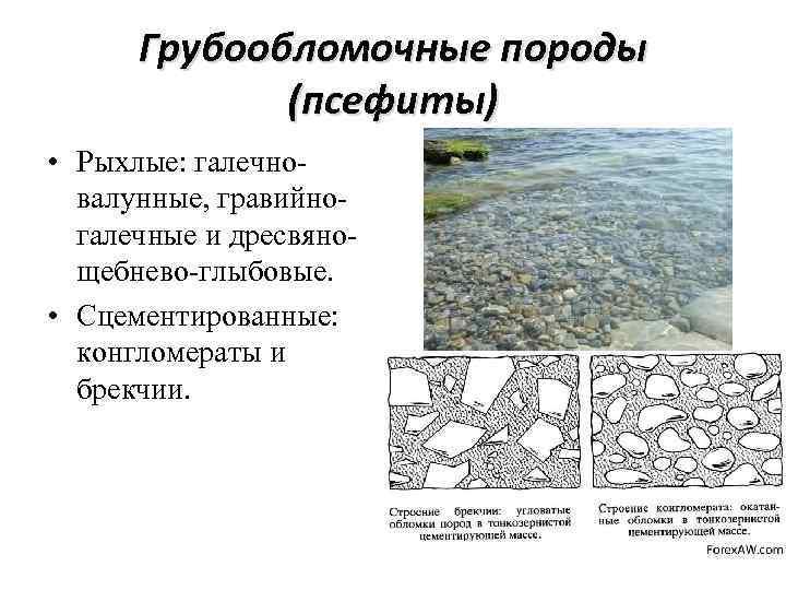 Грубообломочные породы (псефиты) • Рыхлые: галечновалунные, гравийногалечные и дресвянощебнево-глыбовые. • Сцементированные: конгломераты и брекчии.