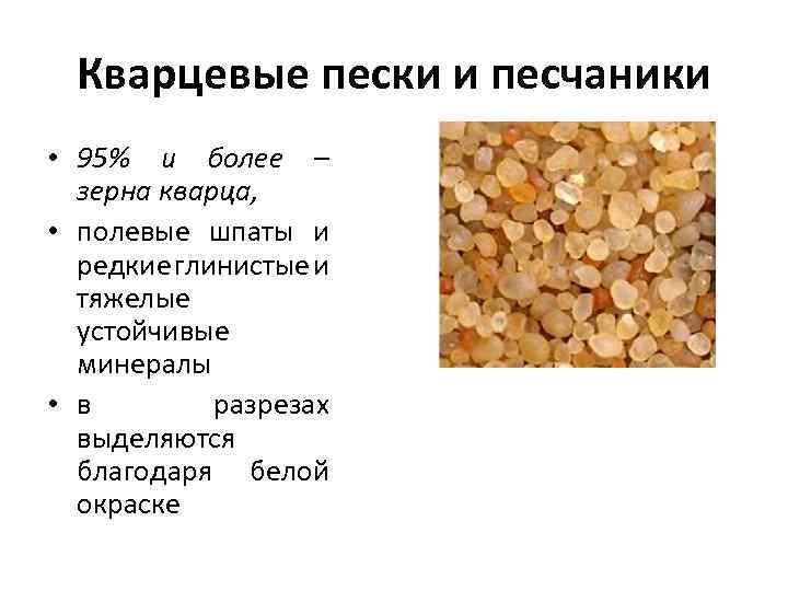 Кварцевые пески и песчаники • 95% и более – зерна кварца, • полевые шпаты