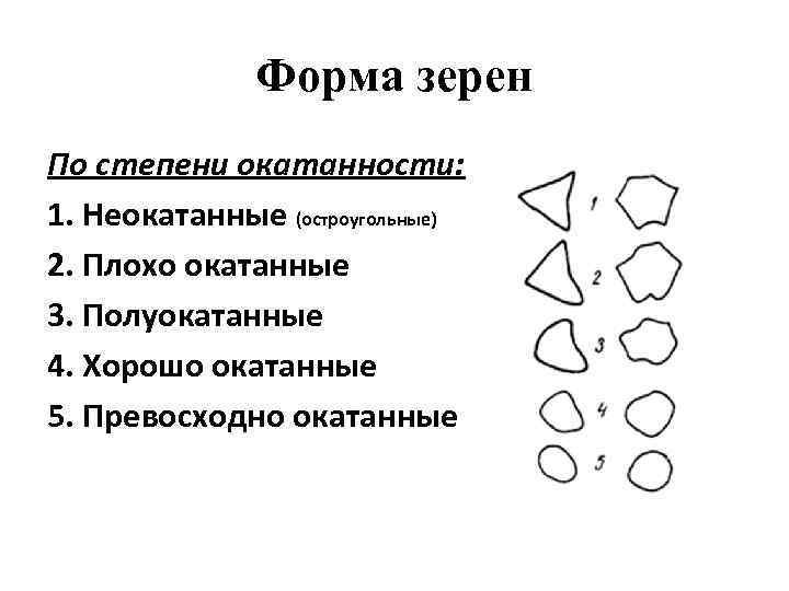 Форма зерен По степени окатанности: 1. Неокатанные (остроугольные) 2. Плохо окатанные 3. Полуокатанные 4.