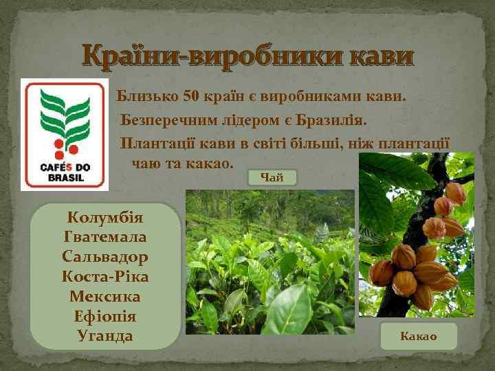 Країни-виробники кави Близько 50 країн є виробниками кави. Безперечним лідером є Бразилія. Плантації кави