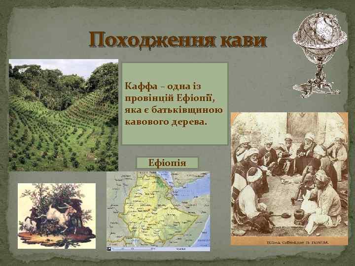 Походження кави Каффа – одна із провінцій Ефіопії, яка є батьківщиною кавового дерева. Ефіопія