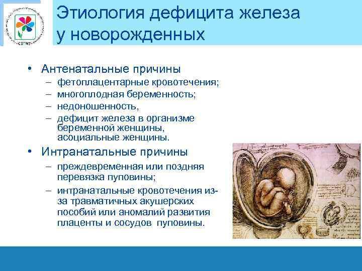 Этиология дефицита железа у новорожденных • Антенатальные причины – – фетоплацентарные кровотечения; многоплодная беременность;