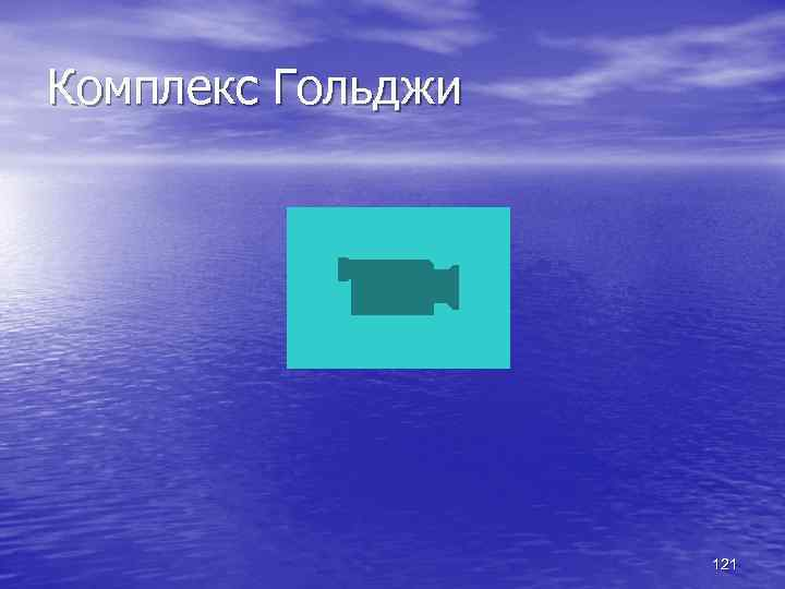 Комплекс Гольджи 121