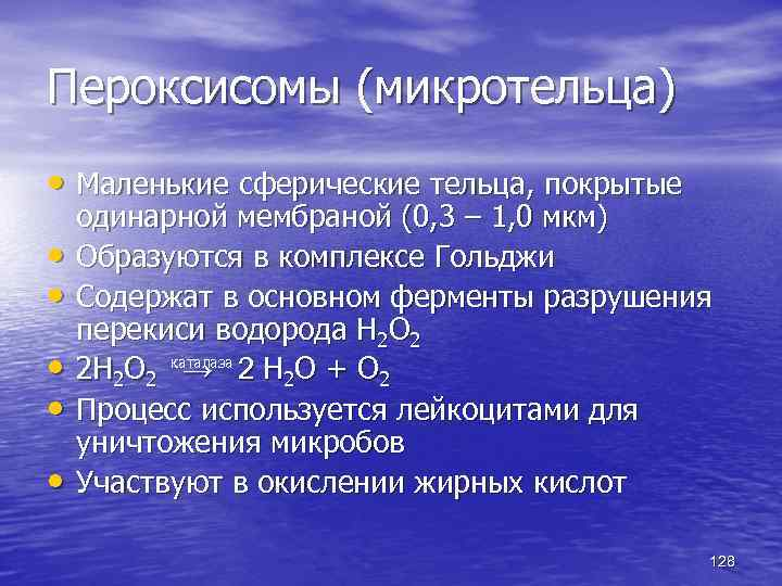 Пероксисомы (микротельца) • Маленькие сферические тельца, покрытые • • • одинарной мембраной (0, 3