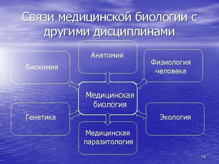 Связи медицинской биологии с другими дисциплинами Анатомия Биохимия Физиология человека Медицинская биология Генетика Экология
