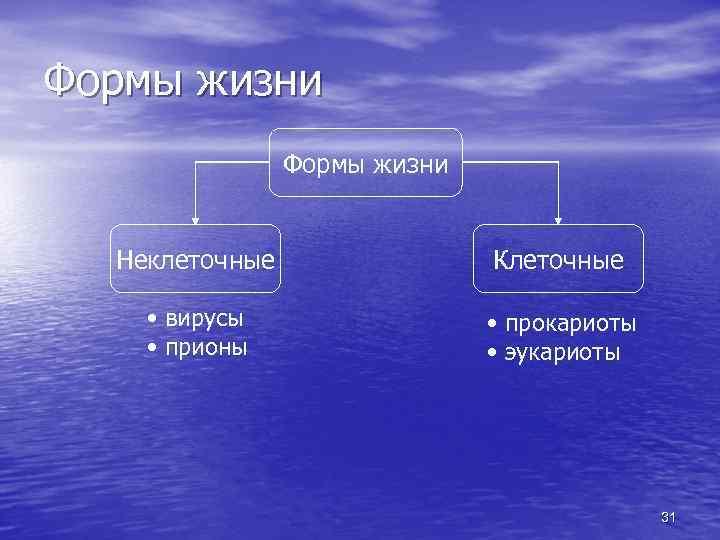 Формы жизни Неклеточные Клеточные • вирусы • прионы • прокариоты • эукариоты 31