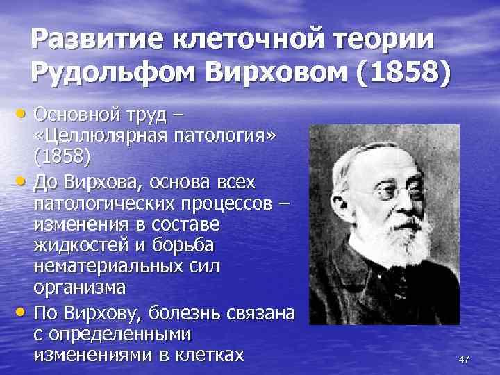 Развитие клеточной теории Рудольфом Вирховом (1858) • Основной труд – • • «Целлюлярная патология»