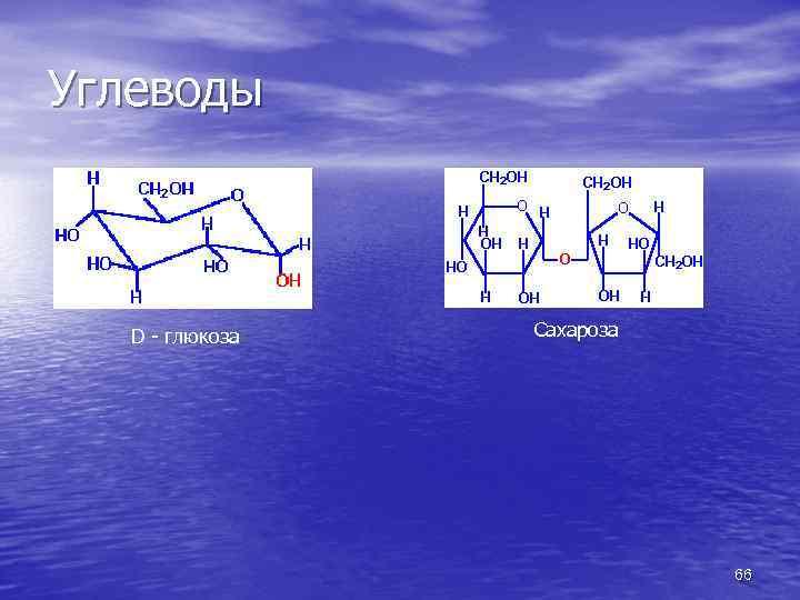 Углеводы D - глюкоза Сахароза 66