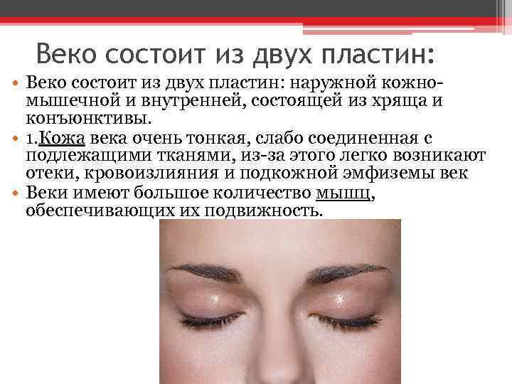Веко состоит из двух пластин: • Веко состоит из двух пластин: наружной кожномышечной и