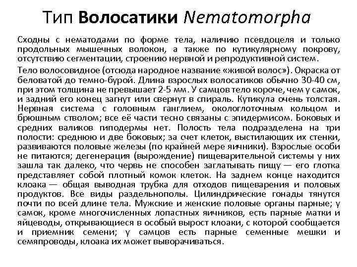Тип Волосатики Nematomorpha Сходны с нематодами по форме тела, наличию псевдоцеля и только продольных