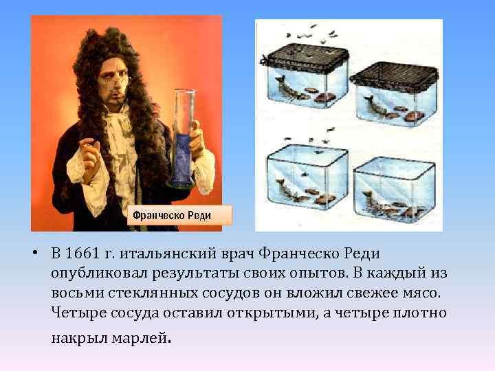 Франческо Реди • В 1661 г. итальянский врач Франческо Реди опубликовал результаты своих опытов.