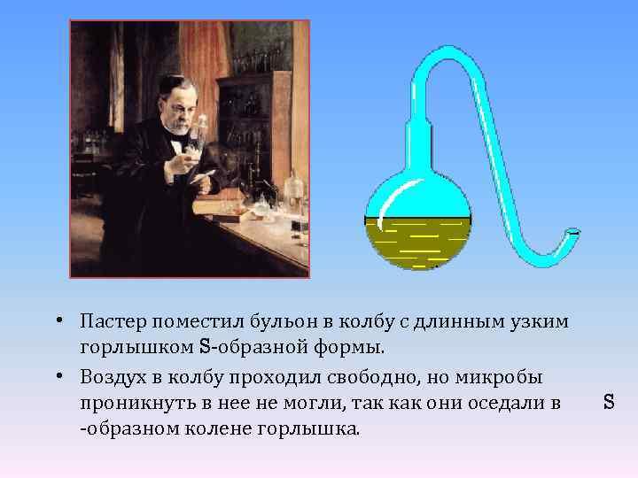 • Пастер поместил бульон в колбу с длинным узким горлышком S-образной формы. •