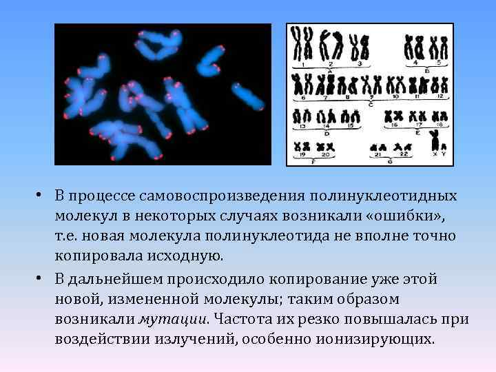 • В процессе самовоспроизведения полинуклеотидных молекул в некоторых случаях возникали «ошибки» , т.