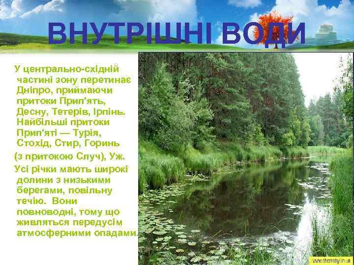 ВНУТРІШНІ ВОДИ У центрально-східній частині зону перетинає Дніпро, приймаючи притоки Прип'ять, Десну, Тетерів, Ірпінь.