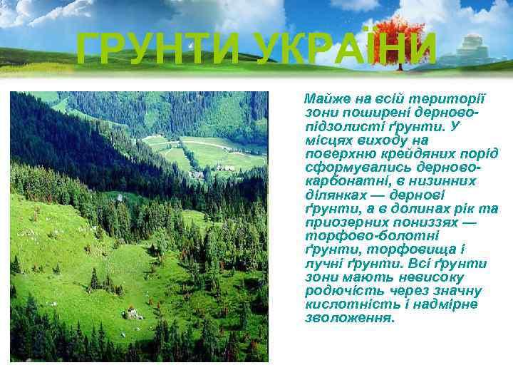 ГРУНТИ УКРАЇНИ Майже на всій території зони поширені дерновопідзолисті ґрунти. У місцях виходу на