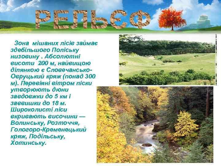 Зона мішаних лісів займає здебільшого Поліську низовину. Абсолютні висоти 200 м, найвищою ділянкою є