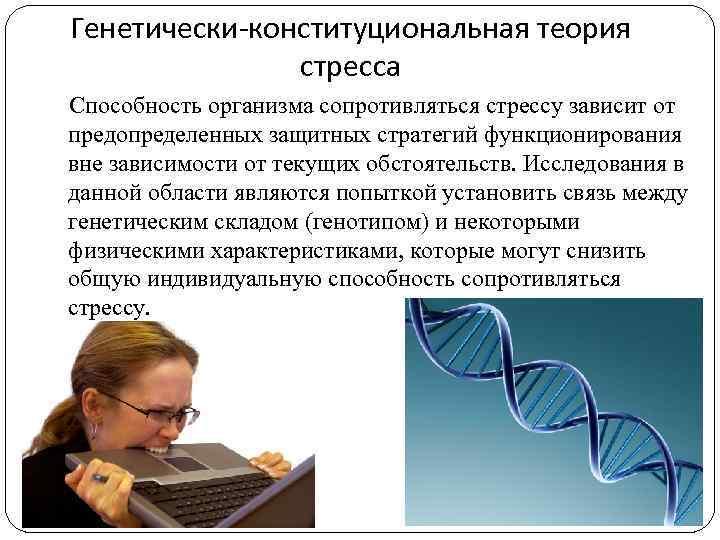 Генетически-конституциональная теория стресса Способность организма сопротивляться стрессу зависит от предопределенных защитных стратегий функционирования вне