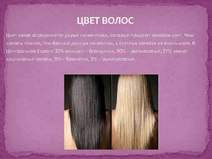 ЦВЕТ ВОЛОС Цвет волос определяется двумя пигментами, которые придают волосам цвет. Чем волосы темнее,