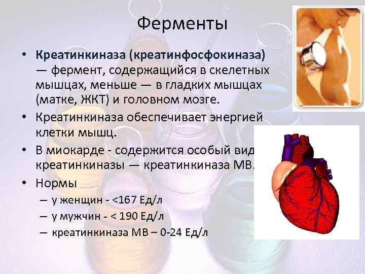 Анализах крови креатинкиназа в цистита народное ребенка от лечение