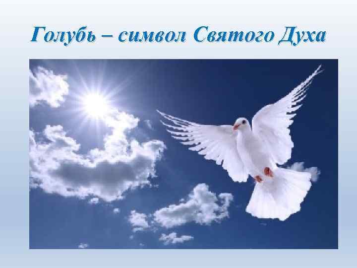 Голубь – символ Святого Духа