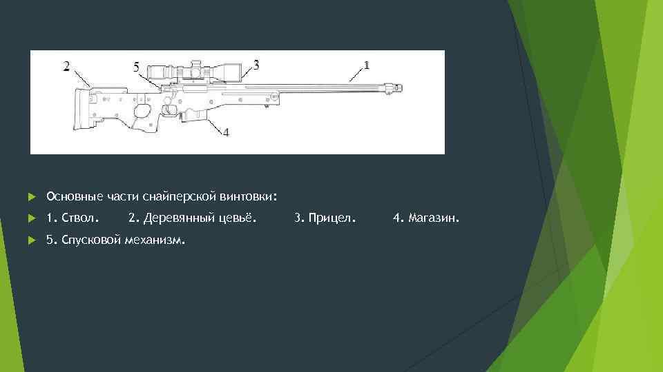 Основные части снайперской винтовки: 1. Ствол. 5. Спусковой механизм. 2. Деревянный цевьё. 3.