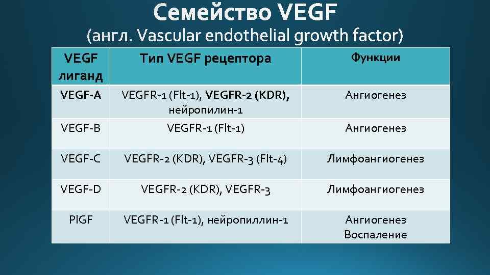 VEGF лиганд Тип VEGF рецептора Функции VEGF-A VEGFR-1 (Flt-1), VEGFR-2 (KDR), нейропилин-1 Ангиогенез VEGF-B