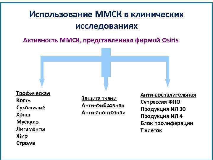 Использование ММСК в клинических исследованиях Активность ММСК, представленная фирмой Osiris Трофическая Кость Сухожилие Хрящ