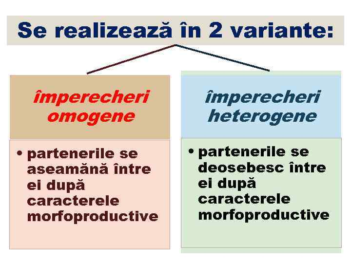 Se realizează în 2 variante: împerecheri omogene împerecheri heterogene • partenerile se aseamănă între