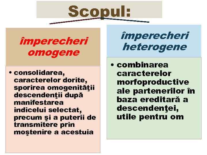 Scopul: împerecheri omogene • consolidarea, caracterelor dorite, sporirea omogenităţii descendenţii după manifestarea indicelui selectat,