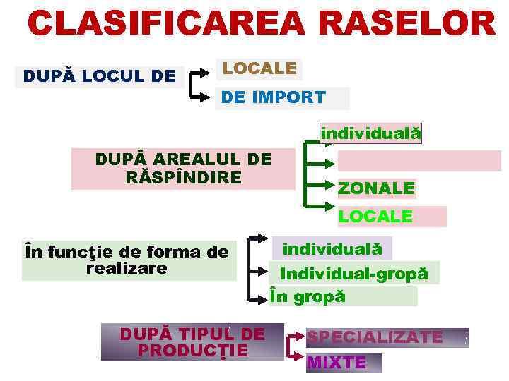 CLASIFICAREA RASELOR DUPĂ LOCUL DE LOCALE DE IMPORT individuală DUPĂ AREALUL DE RĂSPÎNDIRE ZONALE
