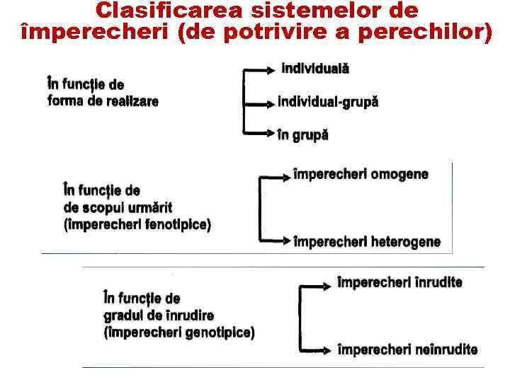 Clasificarea sistemelor de împerecheri (de potrivire a perechilor)