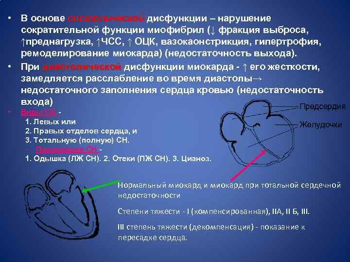 • В основе систолической дисфункции – нарушение сократительной функции миофибрил (↓ фракция выброса,
