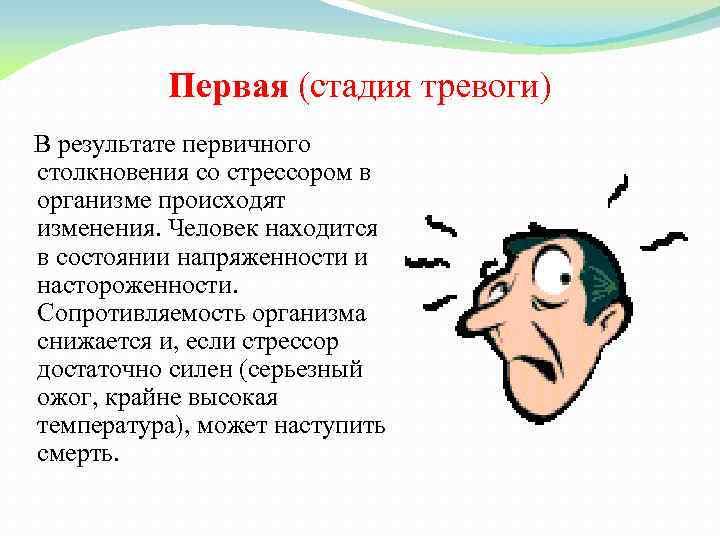 Первая (стадия тревоги) В результате первичного столкновения со стрессором в организме происходят изменения. Человек