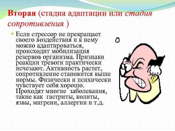 Вторая (стадия адаптации или стадия сопротивления ) Если стрессор не прекращает своего воздействия и